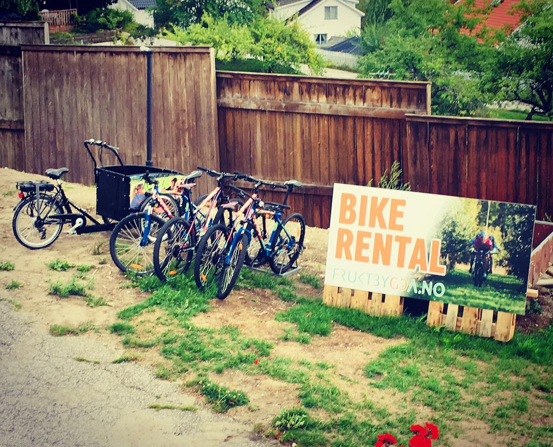 Ta en sykkeltur